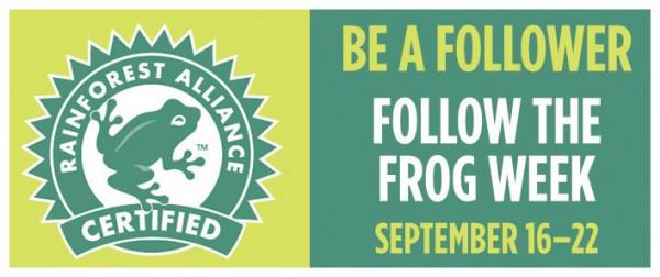 Frog-Week